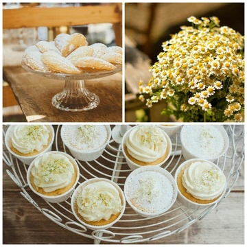 Rezept Elderflower Cupcakes & Apricot Madeleines