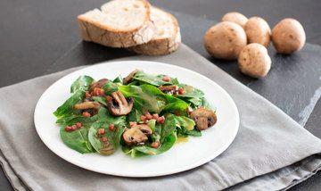 Rezept Feldsalat mit Pilzen und Speck
