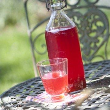 Rezept Fruchtig-süßer Rhabarbersirup