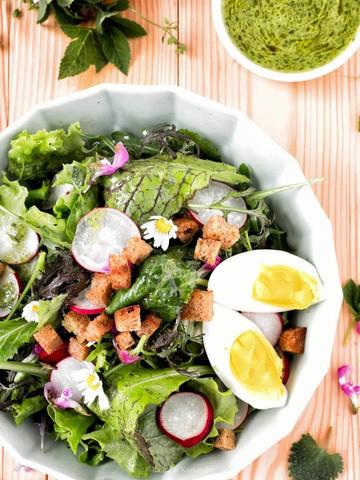 Rezept Frühlingshafter Salat mit Wildkräuterdressing