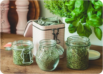Rezept Getrocknete Kräuter aus dem Dörrautomaten