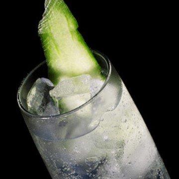 Rezept Gin Tonic mit Gurke