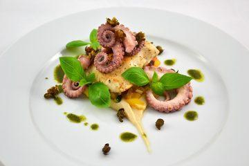 Rezept Hähnchen - Krake - Ratatouille - Bohnenpüree