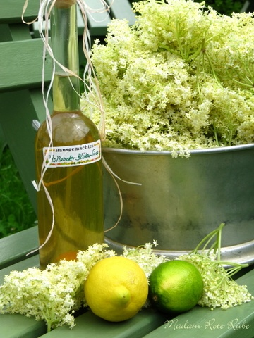 Rezept Holunderblütensirup mit Honig