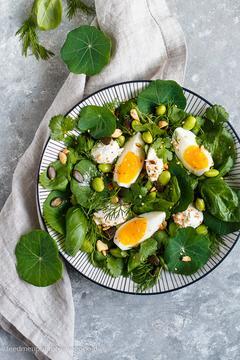 Rezept Kräutersalat mit Kapuzinerkresse, Edamame und Ricotta