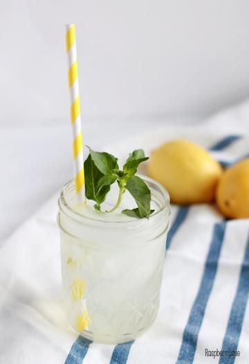 Rezept Limonadensirup mit Minze