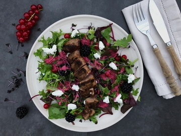 Rezept Rehfilet auf Blattsalat