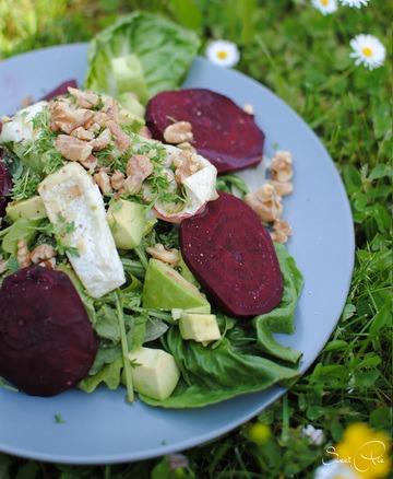 Rezept Rote Bete – Avocado Salat