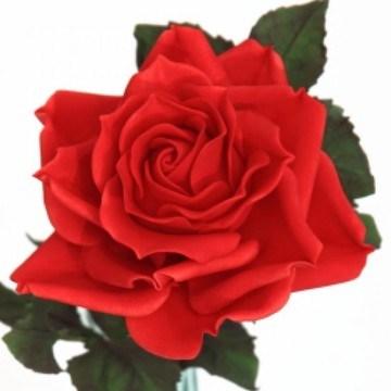 Rezept rote Zuckerrose aus Blütenpaste