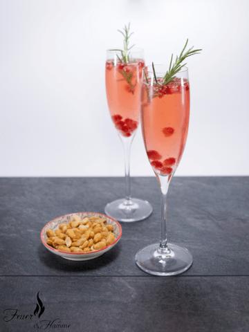 Rezept Spritziger Aperitif mit Rhabarber und Granatapfel