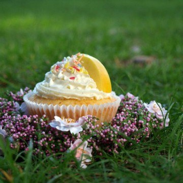 Rezept Vanille-Cupcakes