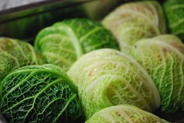 Rezept Wirsingrouladen mit Feta-Hackfleisch-Füllung