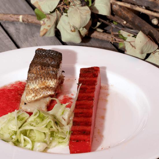 Rezept Barsch, Fenchel und Wassermelone