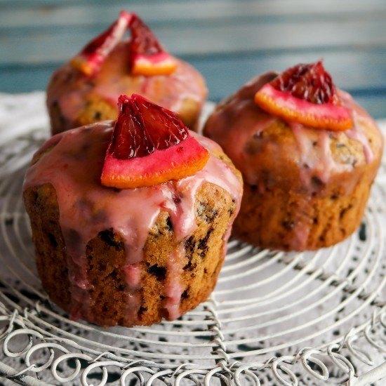 Rezept Blutorangen-Muffins