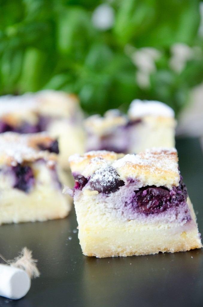Rezept Cheesecake - Schnitten mit Heidelbeeren