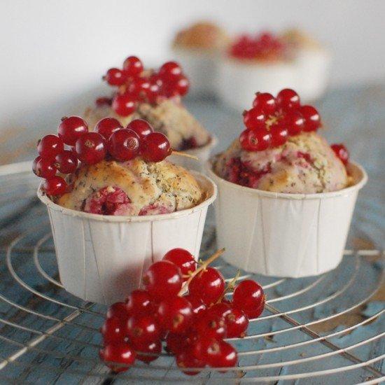 Rezept Johannisbeer Mohn Muffins