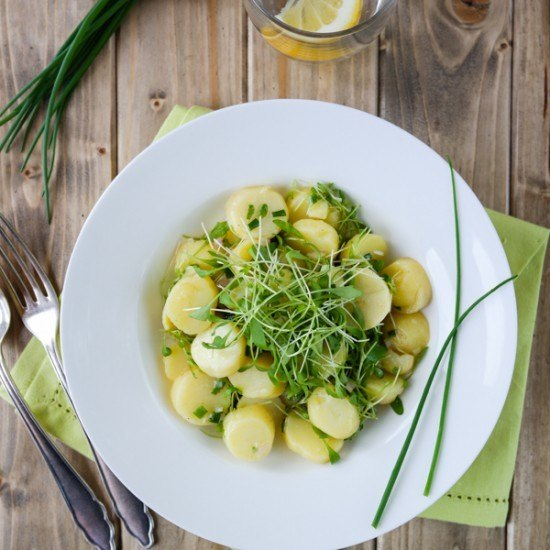 Rezept Kartoffelsalat mit Schnittlauch und Kresse