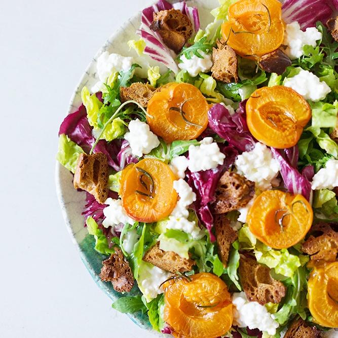 Rezept Salat mit gerösteten Aprikosen, körnigem Frischkäse und Zitronen-Vinaigrette