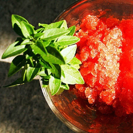 Rezept Tomaten Granita mit karamelisiertem Rosmarin und Ouzo