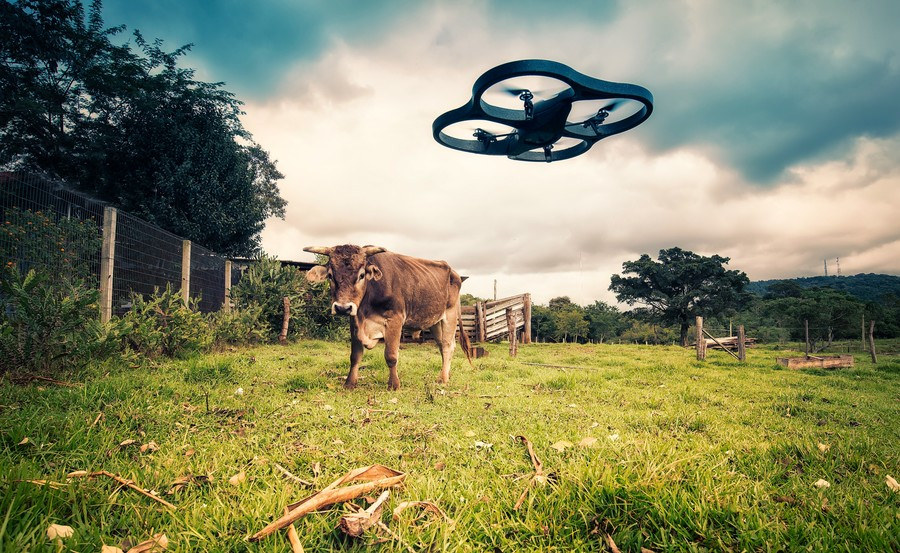 5 Hot Agritech Solutions: drones - N-iX