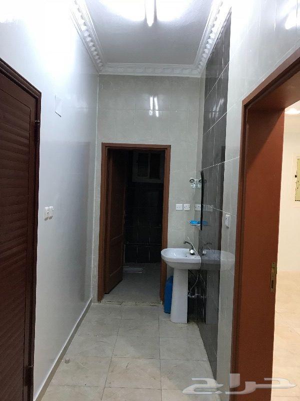 شقة للاجار في حي الصالحية