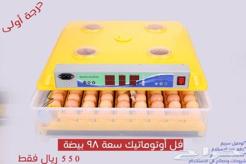 فقاسة بيض توصيل مجاني وهدايا مجانيه