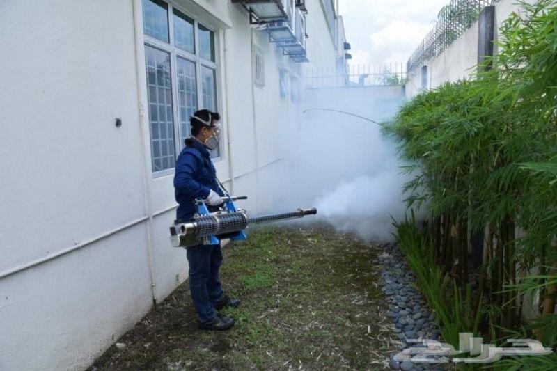 شركة رش مبيدات للمنازل رش مبيدات للحشرات