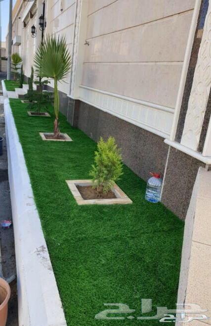 زراعة منزلية وتنسيق الحدائق