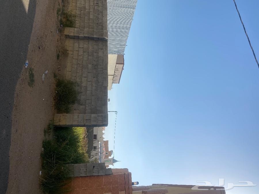 ارض للبيع ريحه شمال غرب مسجد الجوهره