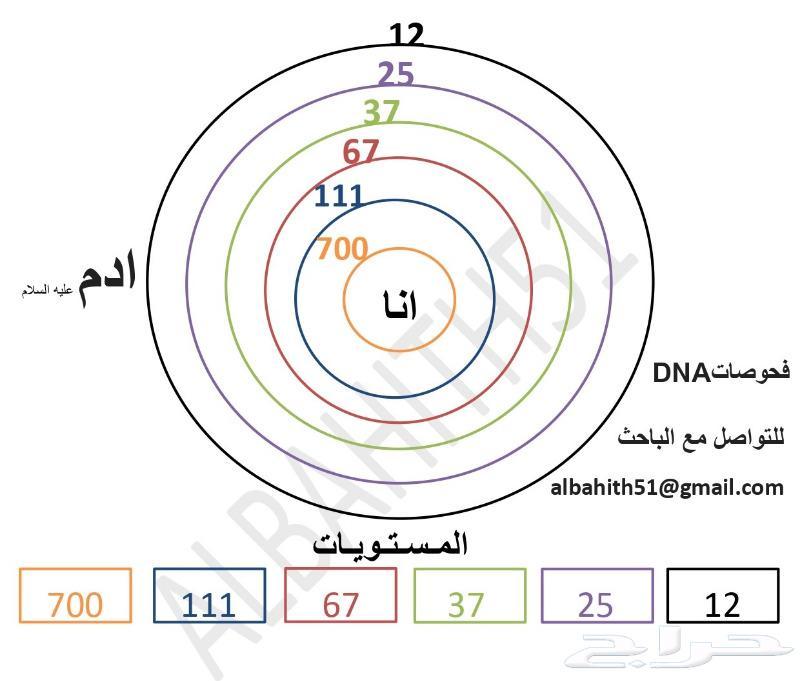تحليل DNA البشري والدراسات التاريخية