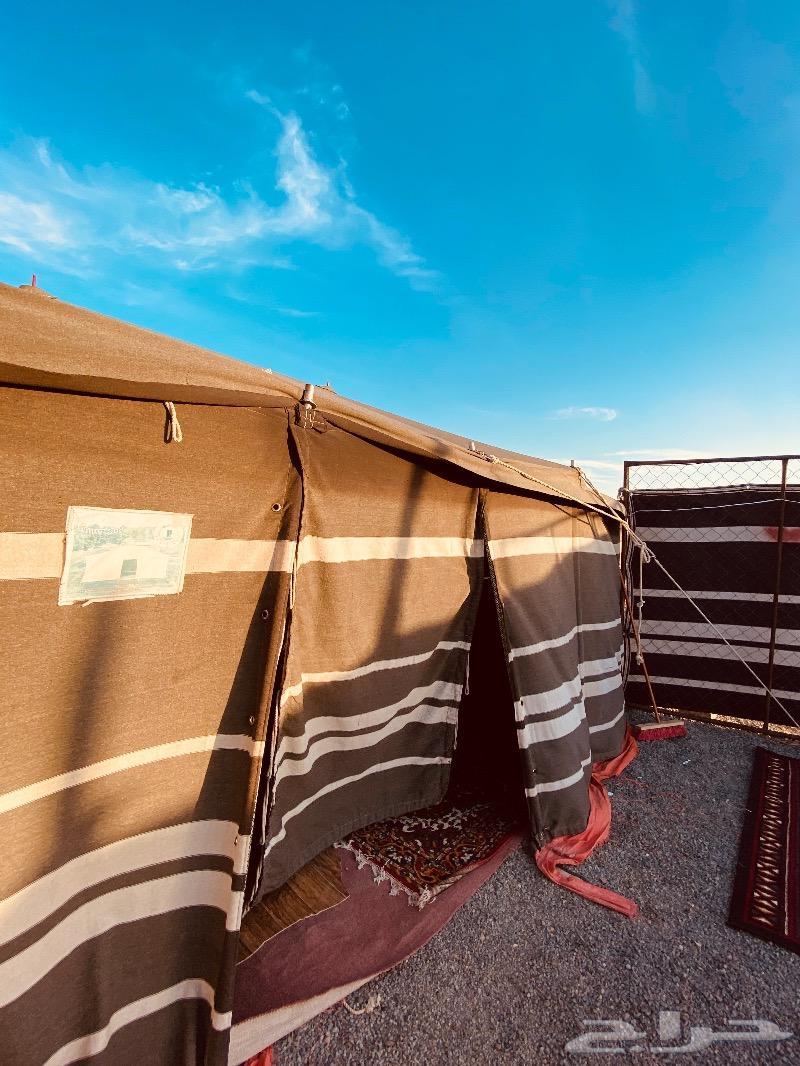 مخيم العزيزية