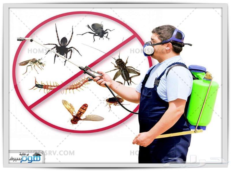 رش مبيدات مكافحة حشرات رش دفان