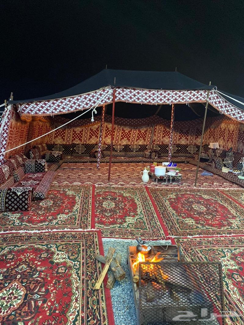 مخيم صن رايز فالسنابل للايجار قسم واحد فقط