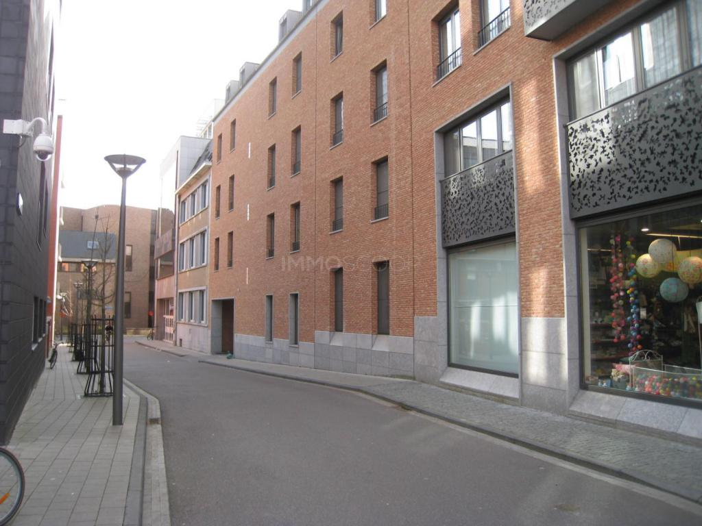 Appartement Te Huur - Waaistraat 2/01.01 in 3000 Leuven - Ref ...