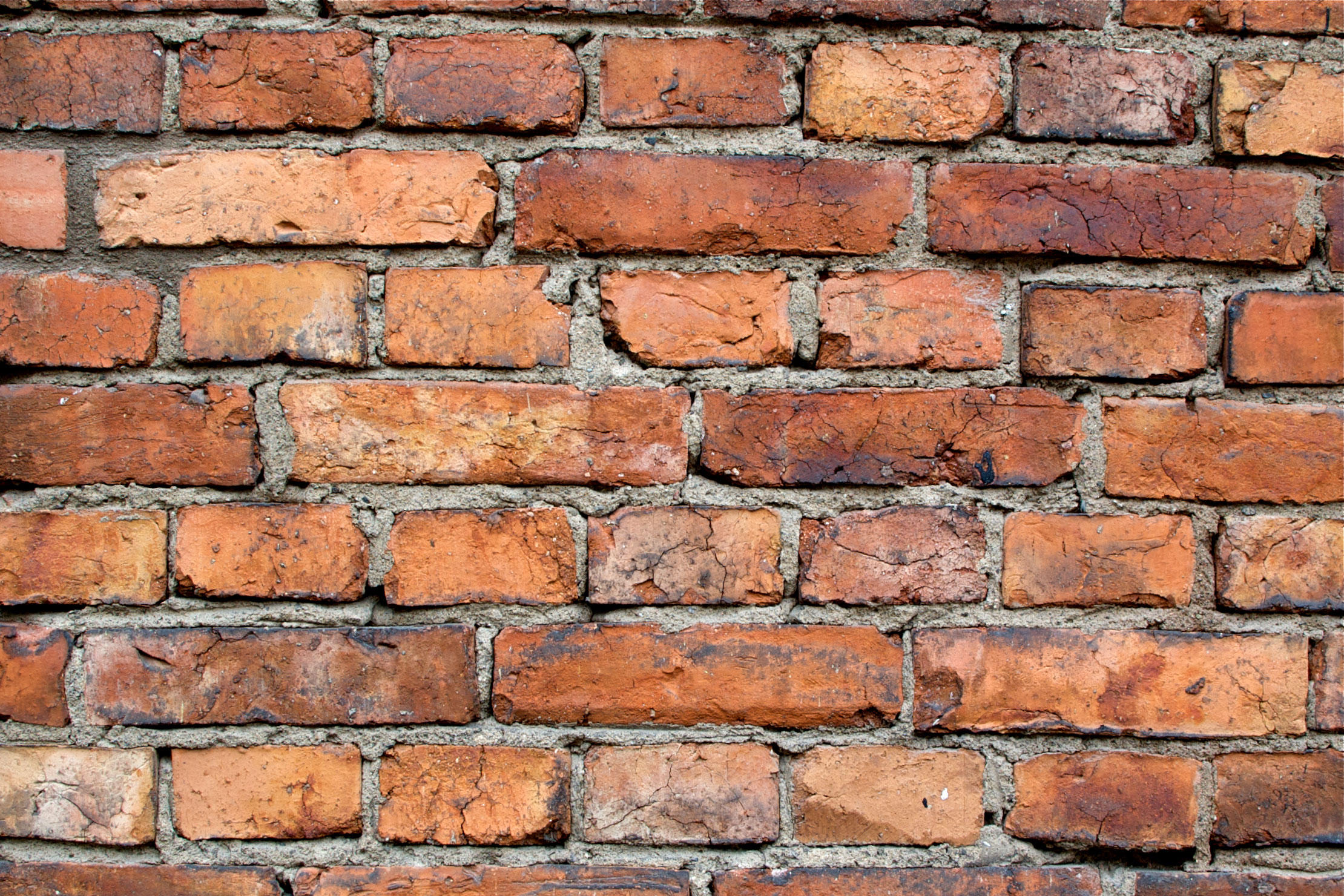 Brick wall: Brady Solicitors