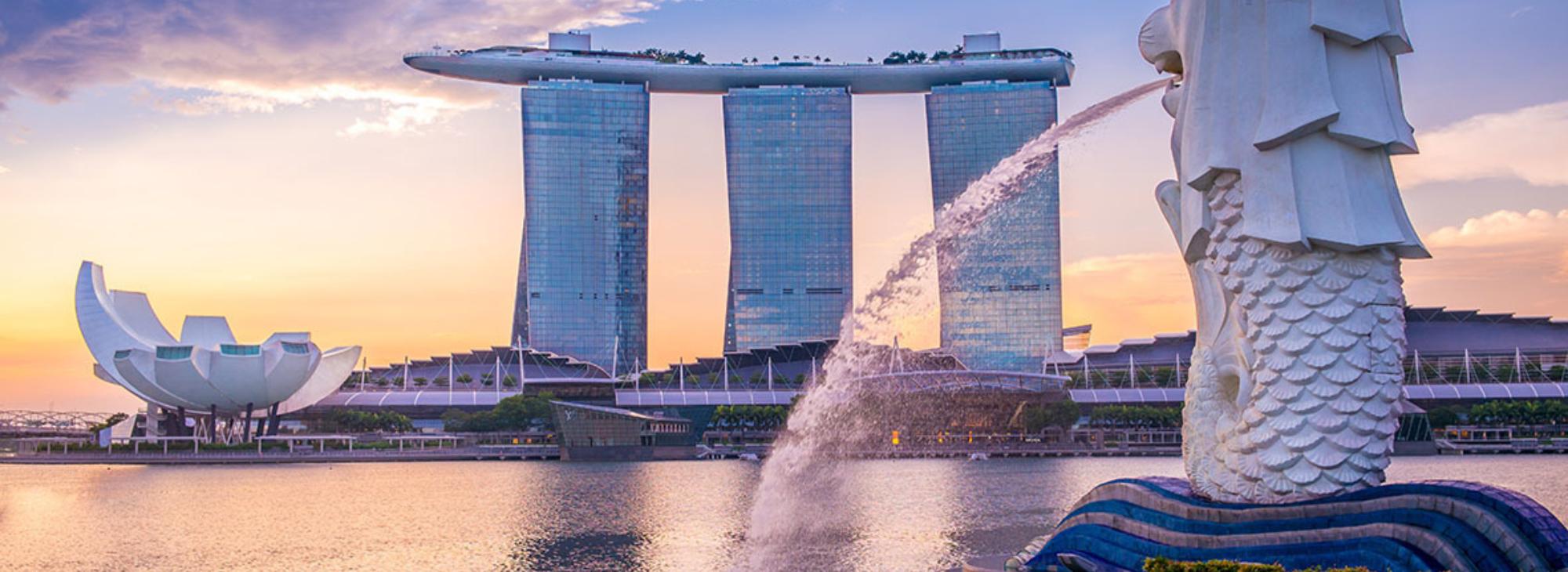 IMPA Singapore 2019 | IMPA Singapore 2019