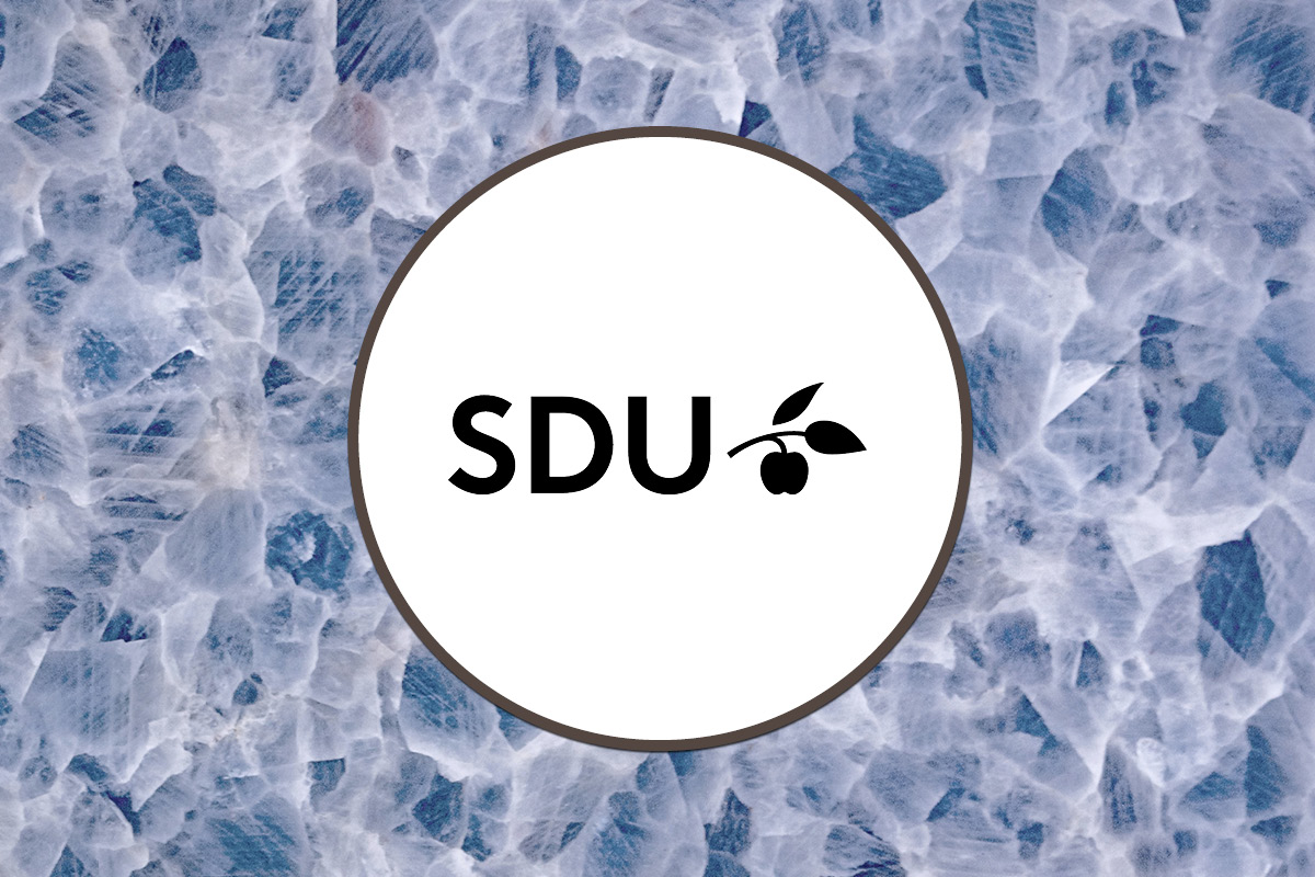 University of Southern Denmark - IN-PART Success Profile - Blog Footer