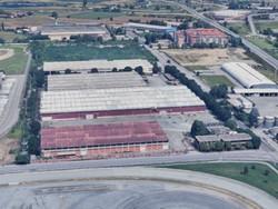 Complesso immobiliare con capannoni palazzina uffici e servizi - Lotto 0 (Asta 11182)