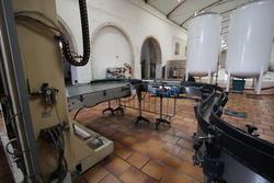 Bottling machines Bertolaso Tepal Robino & Galandrino - Auction 1850