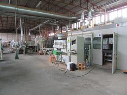 Saomad plant - Lot 81 (Auction 2020)