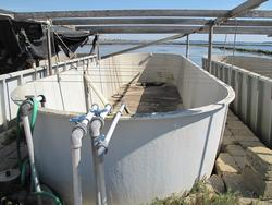 Agro Ittica Tecnica breeding tanks - Lot 10 (Auction 2118)
