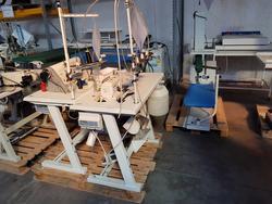 Tagliacuce veloce PEGASUS - Lot 18 (Auction 2213)