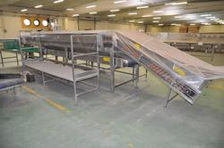 Tecnofrutta vegetable processing line and fruit and vegetable processing equipment - Lot 0 (Auction 2231)