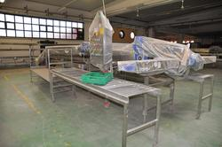 Tecnofrutta vegetable processing line - Lot 1 (Auction 2231)