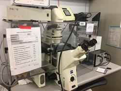 Zeiss upset microscope  - Lot 116 (Auction 22880)