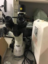 Upset microscope with fluorescence - Lot 132 (Auction 22880)