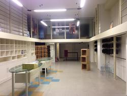 Muebles de tiendas iluminación interna y maniquíes de ropa - Subasta 2341