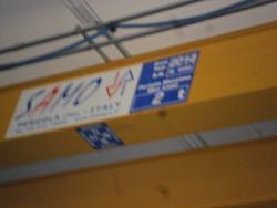 Samo crane - Lot 2 (Auction 2353)