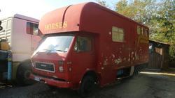 Camion Man per trasporto cavalli - Lotto 10 (Asta 2366)