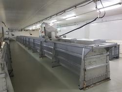 Ricotta processing lines - Lot 1 (Auction 2595)